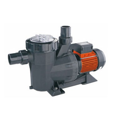 Pompe Filtration Victoria Dual Speed