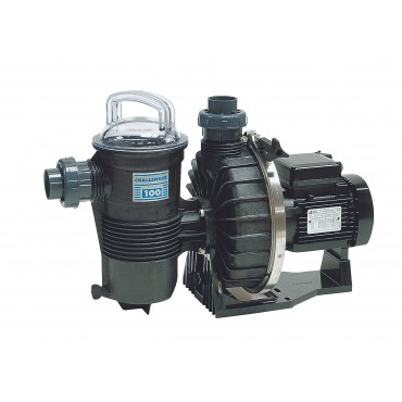 Pompe de Filtration Pentair Challenger